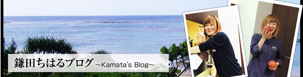 鎌田 ちはるのブログ
